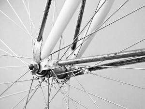 bike spokes dumb questions ask answer